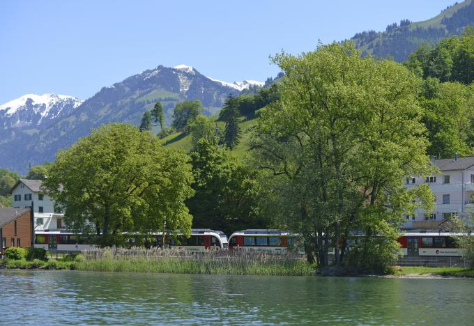 Fink am Sarnersee