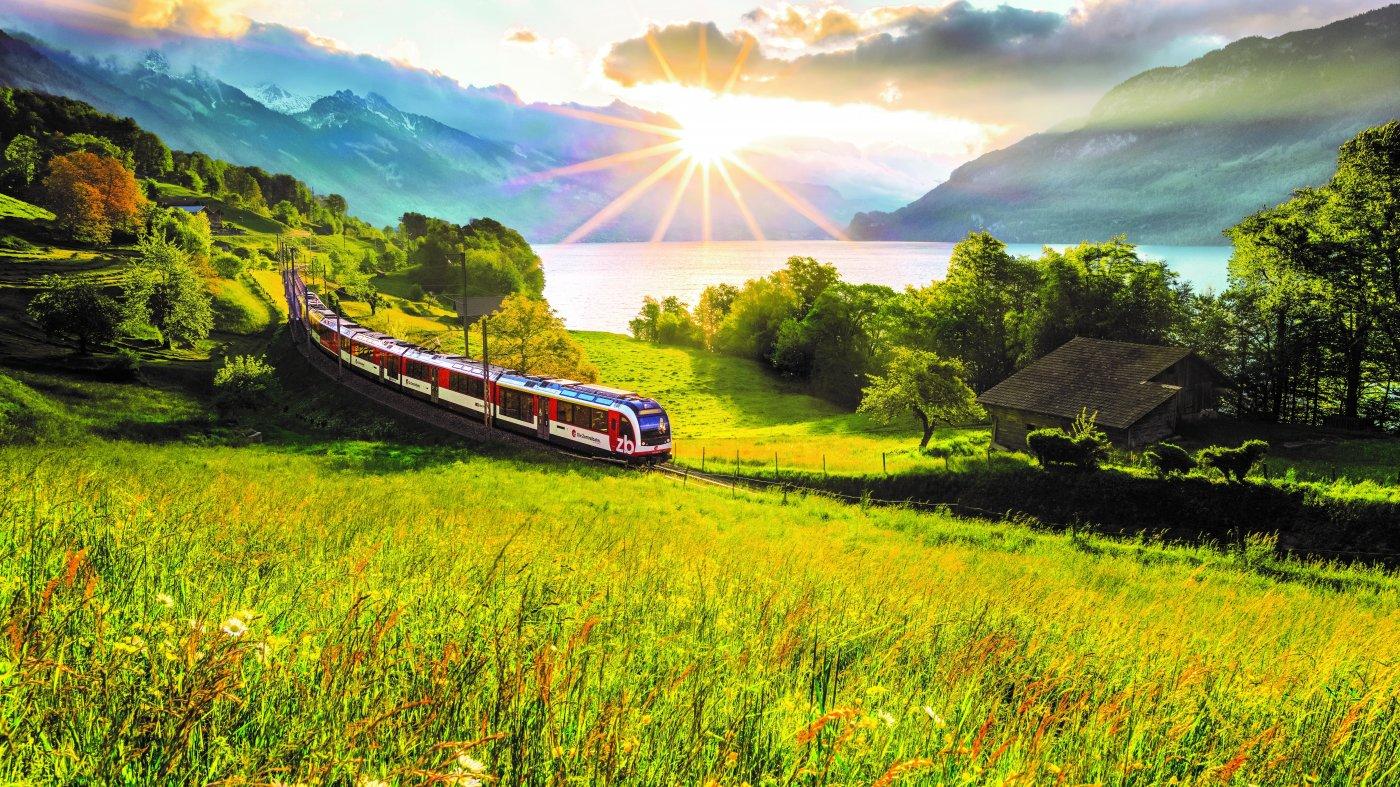 Zug in grüner Landschaft