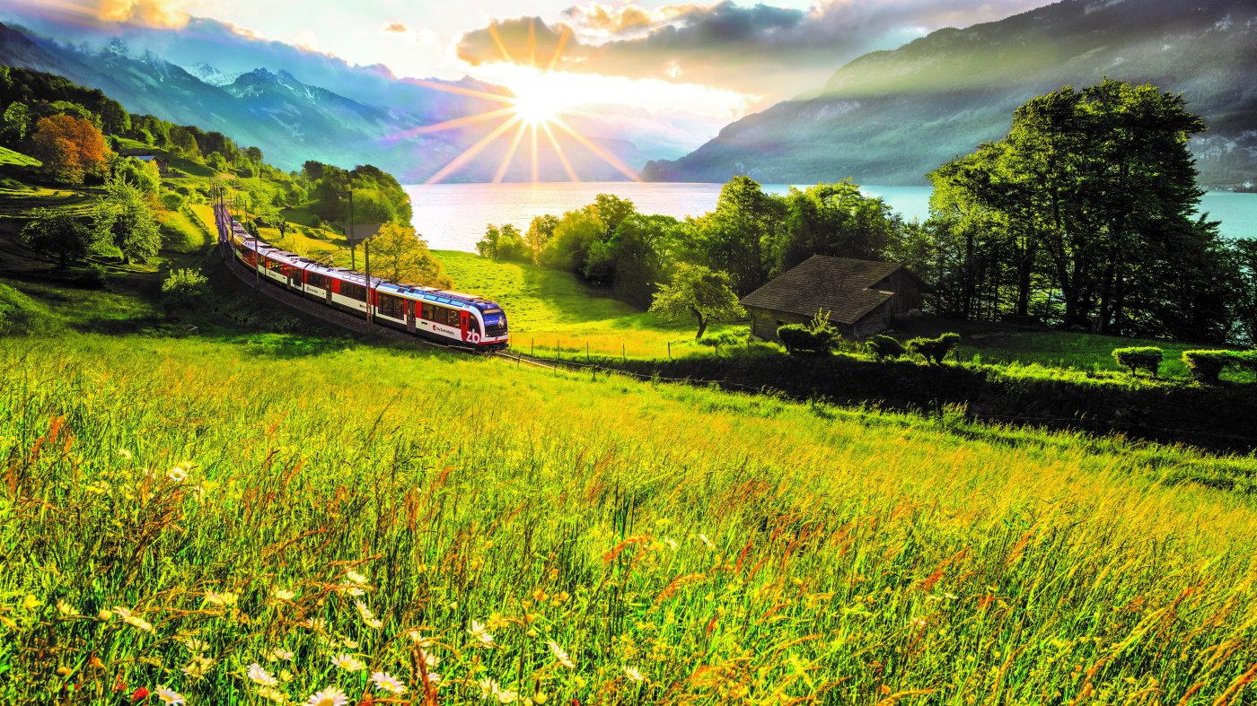 Zug in Landschaft